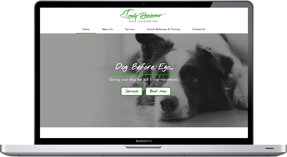 Web Design Newcastle Dog Grooming Truly Pawsome